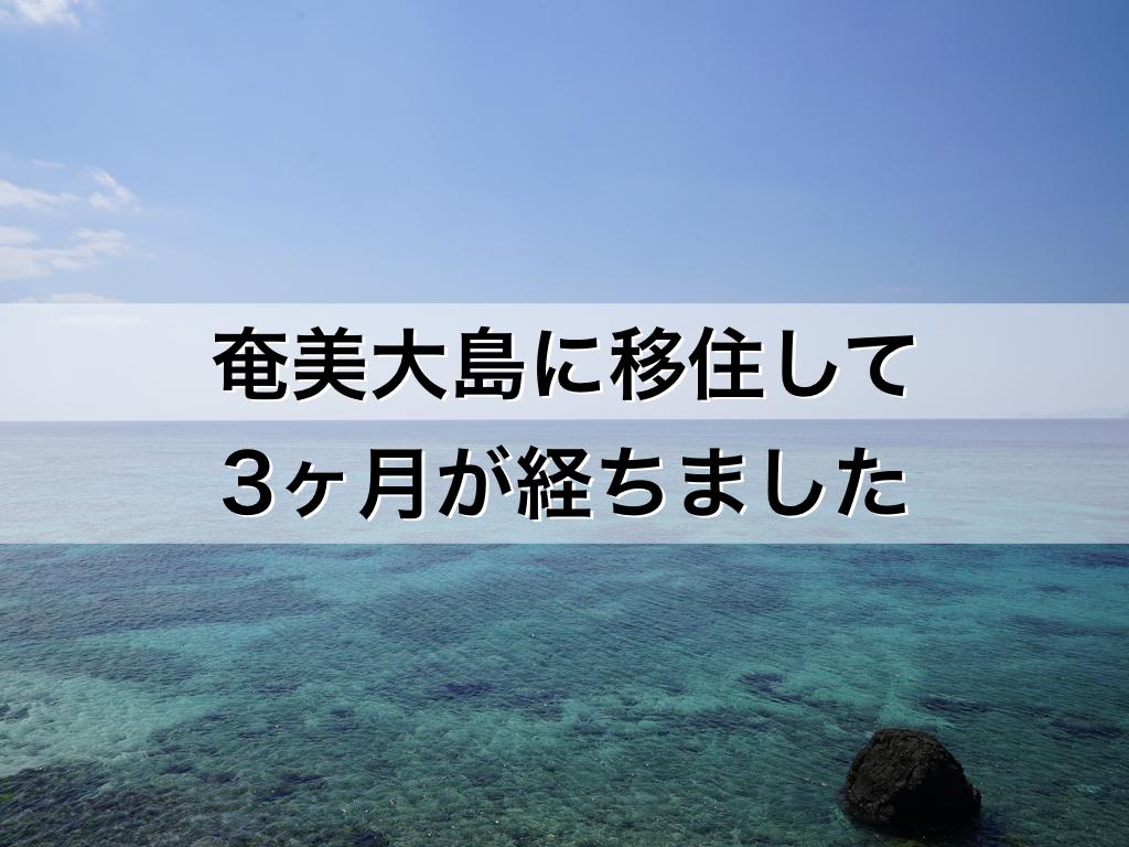 奄美大島に移住して3ヶ月が経ち...